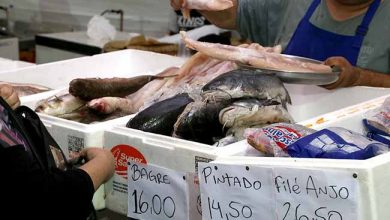 feira peixe esteio 390x220 - 17ª Feira do Peixe de Esteio inicia hoje