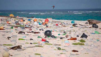 lixo marinho 390x220 - ONU Meio Ambiente promove curso online sobre lixo marinho