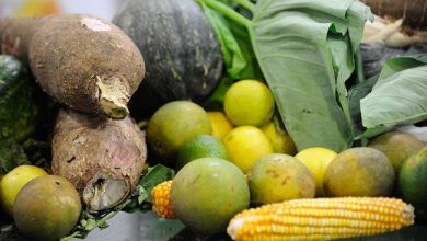 Photo of Xangri-lá tem opção para compra de alimentos orgânicos