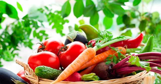 veg - Dicas de vegetais que ajudam você a perder peso