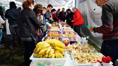 20ª Feira Agropecuária 390x220 - 20ª Feira Agropecuária inicia hoje em Osório