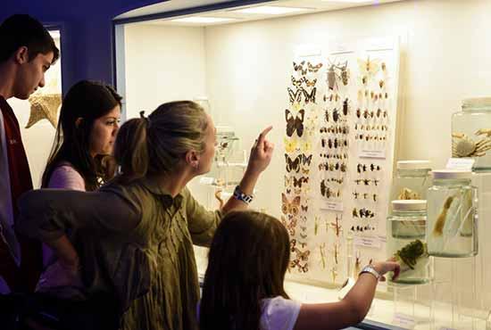 Atrações do Museu reúnem famílias - Museu em Porto Alegre tem descontos e programação para as mães