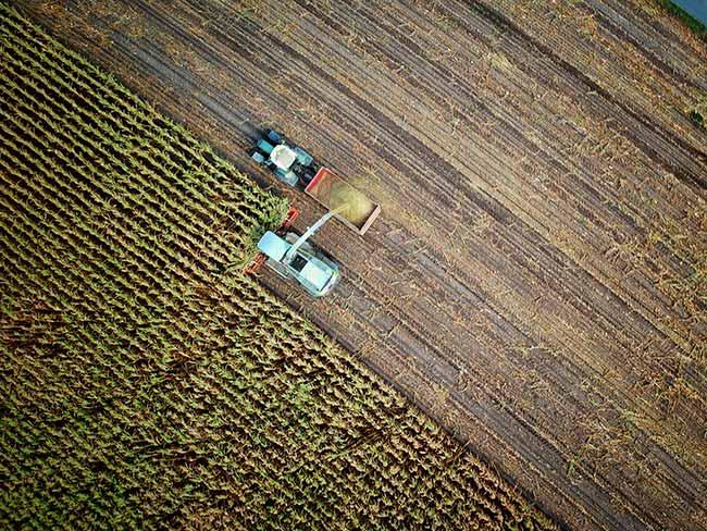 Brazil Agribusiness Innovation Forum acontecerá em Sydney Austrália - Brazil Agribusiness Innovation Forum acontecerá na Austrália