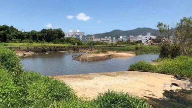 Escassez de água no Rio Camboriú em janeiro deste ano 390x220 - Reunião plenária da Acibalc apresenta o Projeto do Parque Inundável Multiuso do Rio Camboriú