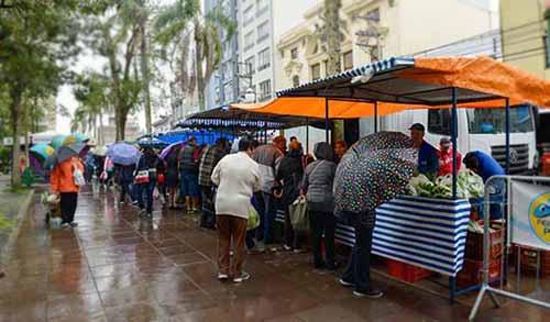 Feira do Peixe Vivo em Caxias do Sul 4 - Feira do Peixe Vivo movimenta milhares de pessoas na Praça Dante Alighieri