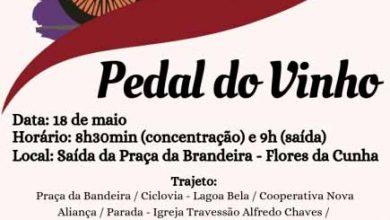 Pedal do Vinho 390x220 - Pedal do Dia do Vinho é neste sábado, dia 18, em Flores da Cunha