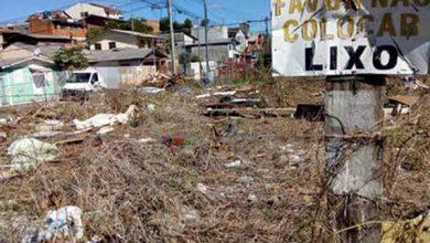 Semana do Meio Ambiente em Caxias do Sul 390x220 - Semana do Meio Ambiente em Caxias do Sul terá programação