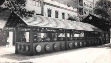 Vinho encanado Fenavinho Bento Gonçalves 1 390x220 - Vinho encanado volta ser atração em festival de Bento Gonçalves