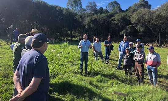 dia de campo em criuva 1 - Produtores participam de Dia de Campo em Criúva em Caxias