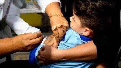 gripe rs 390x220 - RS prioriza as crianças na última semana da vacinação contra a gripe