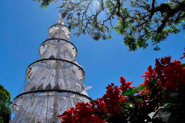 natal dos anjos - Campanha de Arrecadação de Garrafas PETs para o Natal dos Anjos de Dois Irmãos