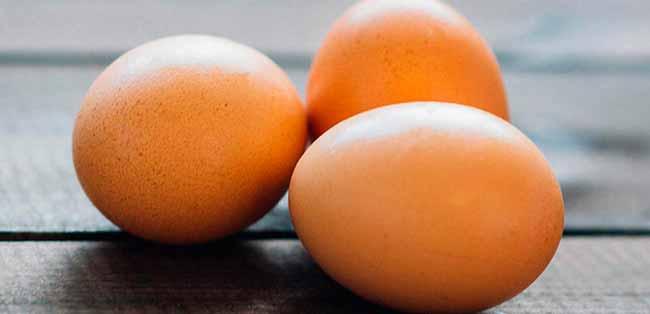 ovo - Produção de ovos tem primeira queda em 22 anos