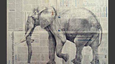 """Extinção de Tomas Barth 390x220 - Centro de Cultura Ordovás recebe exposição """"Extinção"""" de Tomas Barth em Caxias do Sul"""