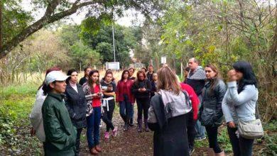 Parque Imperatriz Leopoldina de São Leopoldo 390x220 - Alunos da UFRGS realizam atividades no Parque Imperatriz Leopoldina