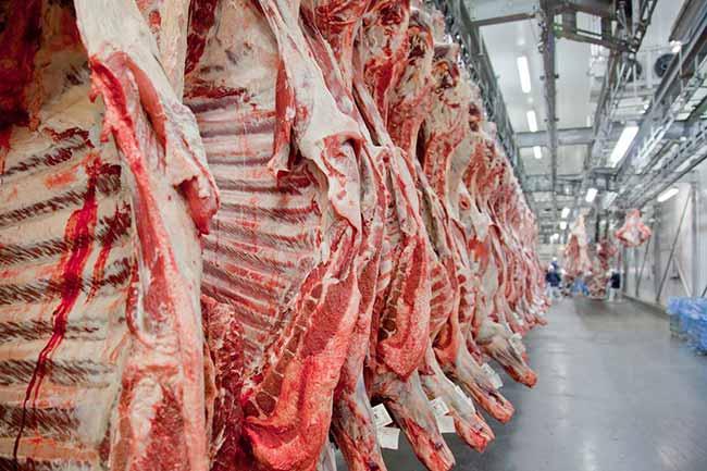 carne abiec - Exportação de carne bovina para a China aguarda liberação