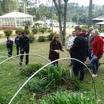 cuidados e embelezamento dos jardins de Caxias do Sul 1 - Servidores municipais são treinados para cuidar dos jardins de Caxias do Sul