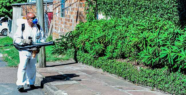 dengue poa - Porto Alegre contabiliza 354 casos de dengue