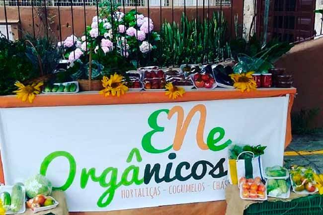 feira normal - Conectando empreendedores gaúchos