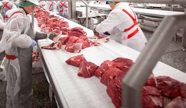 frig - Veterinários dos EUA inspecionam frigoríficos no Brasil