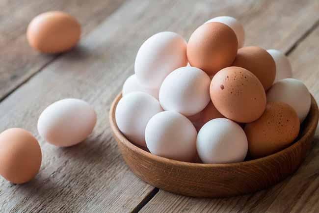 ovo - Fósforo é um nutriente essencial para a saúde
