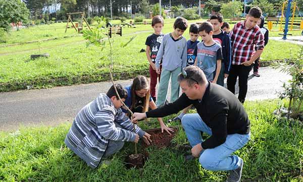 plantio de árvore em Sapiranga 1 - Semana do Meio Ambiente inicia com plantio de árvore em Sapiranga