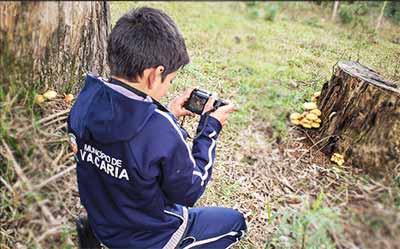 vacaria fotografia ambiental 1 - Alunos das municipais exercitam fotografia ambiental em Vacaria