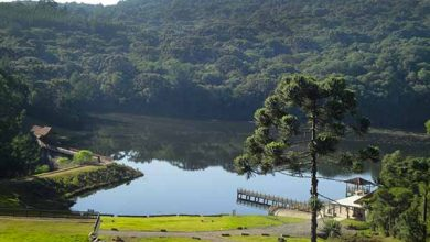 z9LYBiu1dsKbgot2FiCmONerBNXngynWgHYv03Ia 390x220 - Confira os dias de visitação ao Parque dos Pinheiros em Gramado