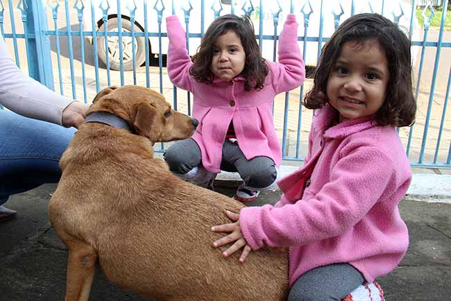 AdotantesCaesCanil 004 - Visita aos cães adotados do Canil Municipal de Esteio