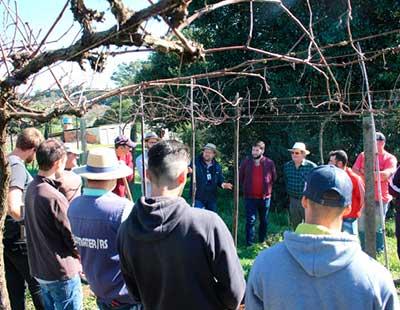 Curso de Profissionalização de Viticultores 1 - Jovens viticultores recebem curso profissionalizante em Bento Gonçalves