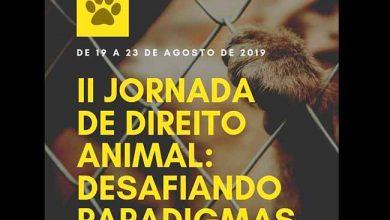 II Jornada de Direito Animal1 390x220 - II Jornada de Direito Animal inicia amanhã em Porto Alegre