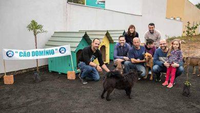 Inaugurado Cãodomínio para atender cães comunitários 1 390x220 - Canoas inaugura Cão Domínio para atender cães comunitários