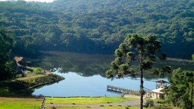 Parque dos Pinheiros 390x220 - Gramado divulga visitação ao Parque dos Pinheiros em agosto