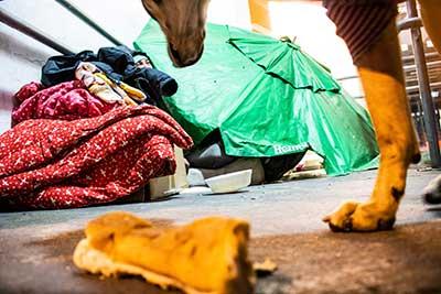 Pelotas frio assistência social 2 - Pelotas enfrenta o frio com calor humano