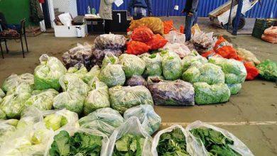 alimentos do paa 390x220 - Programa de Aquisição de Alimentos inicia em São Leopoldo