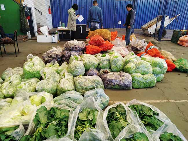 alimentos do paa - Programa de Aquisição de Alimentos inicia em São Leopoldo