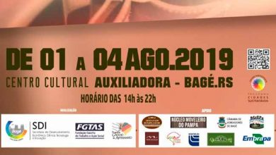 artesbage 390x220 - 2ª Feira de Artesanato do Pampa acontece em Bagé