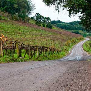 asfaltamento entre Loreto e São Cristóvão 3 - Prefeito Daniel Guerra anuncia asfaltamento entre Loreto e São Cristóvão