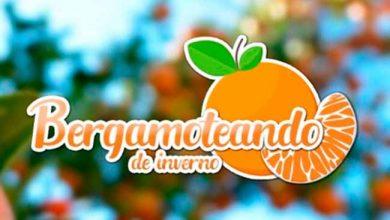 bergamo 390x220 - Turismo rural em Venâncio Aires