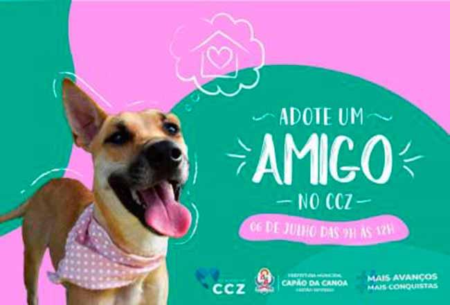 caescapao - Capão da Canoa faz ação para adoção de animais neste sábado