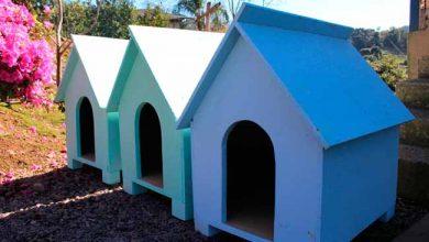 casinhas bento 390x220 - Bento Gonçalves já entregou 33 casinhas no Projeto Posse Responsável