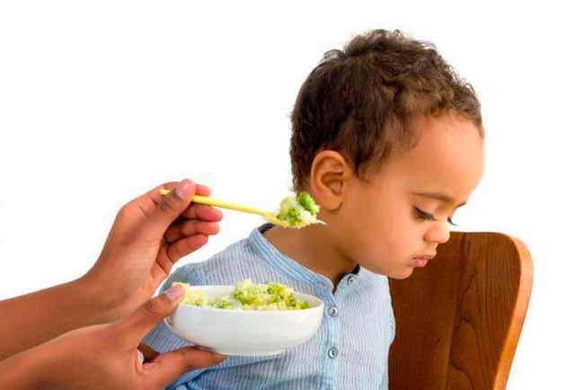 criapt - É normal a criança comer pouco?
