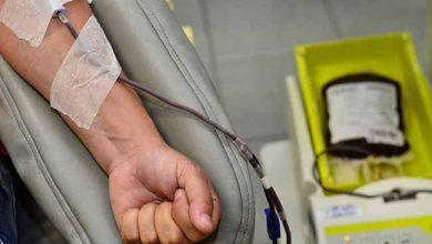doaçao de sangue 390x220 - Casos de hepatites virais caíram 7% em dez anos