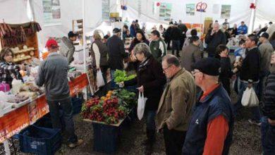 expoftrescor 390x220 - 23ª Expofeira celebrou a história agrícola de Três Coroas
