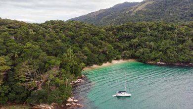 ilha grande 390x220 - Paraty e Ilha Grande agora são patrimônios da humanidade pela Unesco