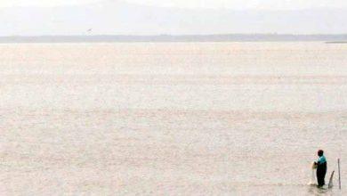 litoral ufrgs 390x220 - UFRGS apresenta mostra fotográfica sobre o Litoral Norte gaúcho
