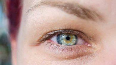 olh 390x220 - Luteína e DHA ajudam na prevenção de doenças oculares