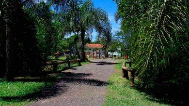 parque imperatriz sao leopoldo 390x220 - Sábado tem trilha ecológica em São Leopoldo