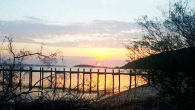 parquers 390x220 - Educação ambiental em cinco parques estaduais neste domingo