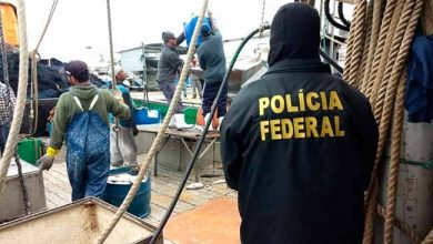 pesca Rio Grande 390x220 - Apreendidas 150 toneladas de peixes pescados irregularmente em Rio Grande