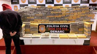 polpoa 390x220 - Polícia Civil apreende mais de 140 quilos de maconha em Porto Alegre
